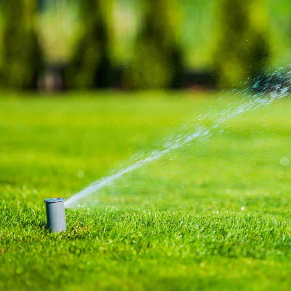 Using Your Yard Sprinklers in the Middle of the Day