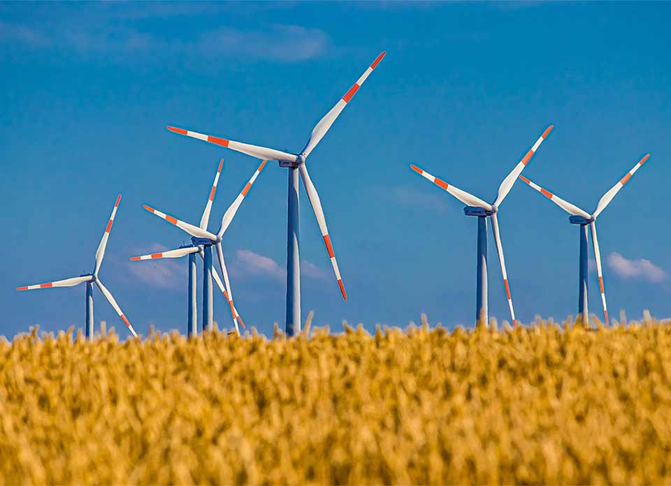 Power to Choose Texas offers renewable energy plans and electricity rates.